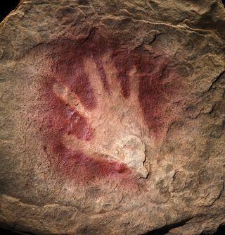 Chauvet hand2